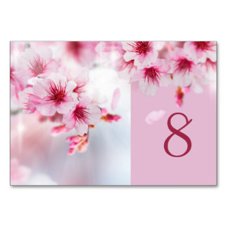 Sakura, Cherry blossom Table Number Card