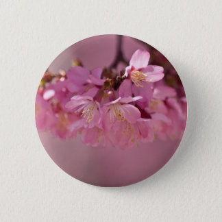 Sakura Cherry Blossoms Delicate Pink Bouquet Button