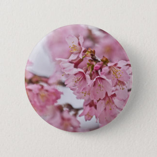 Sakura Cherry Blossoms Pale Pink Pinback Button