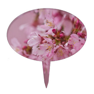 Sakura Cherry Blossoms Pale Pink Reflections Cake Topper