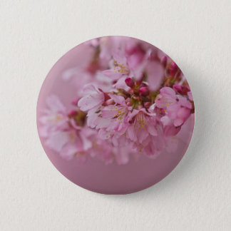 Sakura Cherry Blossoms Pale Pink Reflections Pinback Button