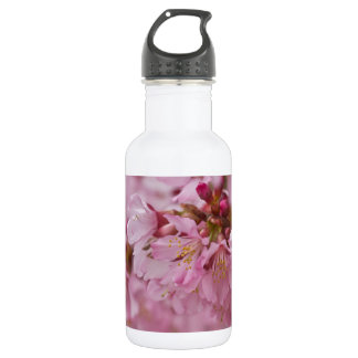 Sakura Cherry Blossoms Pale Pink Reflections Water Bottle