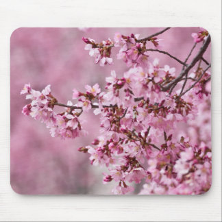 Sakura Cherry Blossoms Pastel Pink Layers Mouse Pad
