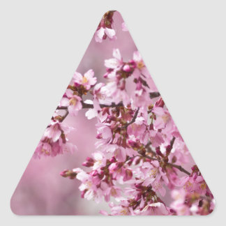 Sakura Cherry Blossoms Pastel Pink Layers Triangle Sticker