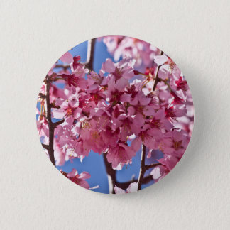 Sakura Cherry Blossoms Red Stars Pinback Button