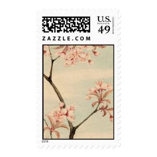 Sakura cherry Postage