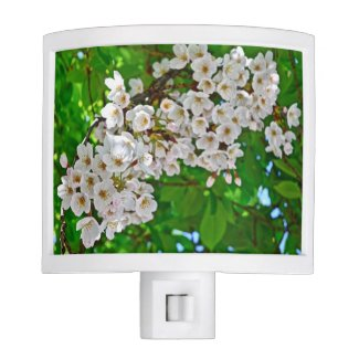 Sakura Delight Cherry Blossom Nightlight