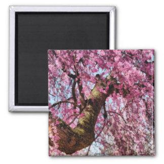 Sakura - Finally it's Spring Refrigerator Magnet