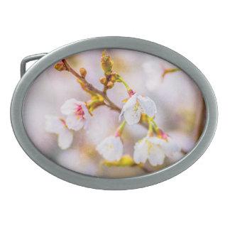 Sakura - flor de cerezo japonesa hebillas cinturon ovales