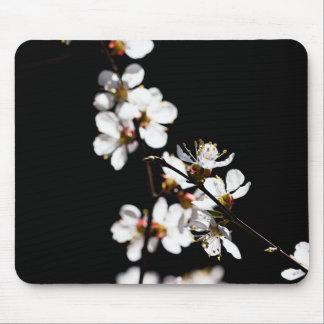 Sakura flowers mouse pad