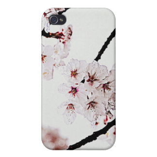 SAKURA IMAGE iPhone 4 COVER