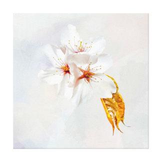 Sakura - Japanese cherry blossom Canvas Print