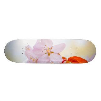 Sakura - Japanese cherry blossom Skateboard Deck