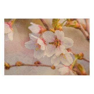 Sakura - Japanese Cherry Blossom Wood Print
