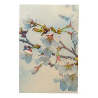 Sakura - Japanese Cherry Blossom Wood Wall Art