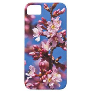 Sakura Japanese Cherry Blossoms Blue Sky iPhone SE/5/5s Case