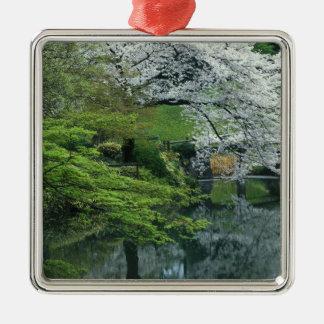 Sakura, jardín del Koraku-en de Koishikawa, Tokio, Adorno Cuadrado Plateado