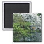 Sakura, jardín del Koraku-en de Koishikawa, Tokio, Imanes Para Frigoríficos