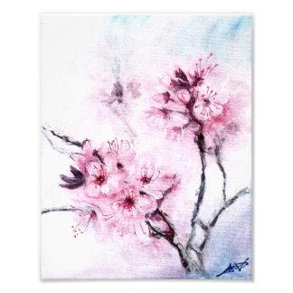 Sakura mini fotos