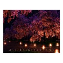 japenese, sakura, cherry, blossom, lanterns, Postcard with custom graphic design
