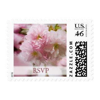 Sakura • RSVP Stamp