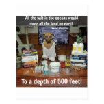 Sal del perro del conocimiento en los océanos postal