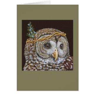 """Sal"", the barred owl card"