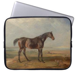Sala de James - el Dr. Syntax, un caballo de carre Fundas Portátiles