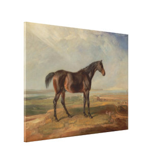 Sala de James - el Dr Syntax un caballo de carre Impresión En Lienzo Estirada