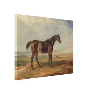 Sala de James - el Dr Syntax un caballo de carre Impresiones En Lona Estiradas