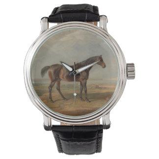 Sala de James - el Dr. Syntax, un caballo de Reloj De Mano