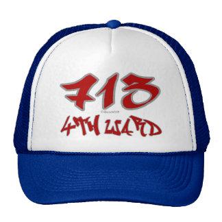 Sala del representante 4to (713) gorra
