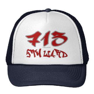 Sala del representante 5to (713) gorra