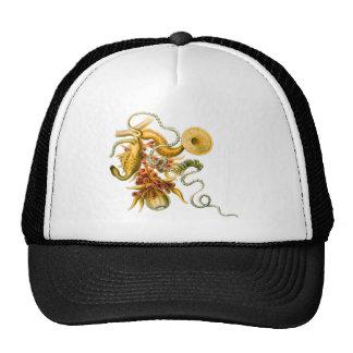 Salacella Mesh Hat