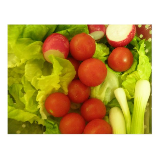 Salad Vegetables Postcard