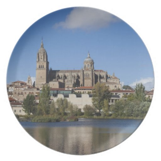 Salamanca Cathedrals and town 2 Dinner Plates