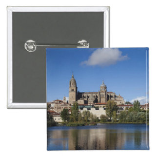 Salamanca Cathedrals and town 2 Pinback Button