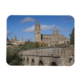 Salamanca Cathedrals, viewed from Puente Romano Magnet