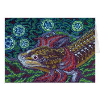Salamander de Barton Springs sosorum de Eurycea Tarjetón