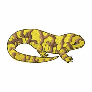 Salamander de tigre