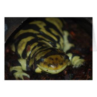 salamander de tigre tarjeta de felicitación