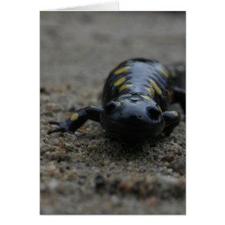 Salamander manchado tarjeta de felicitación