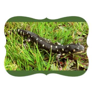 """Salamanders manchados invitación 5"""" x 7"""""""