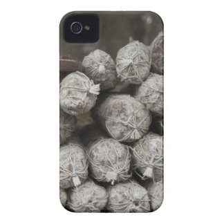 Salami italiano iPhone 4 protectores
