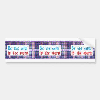SALE Wisdom Quote gifts for all Bumper Sticker