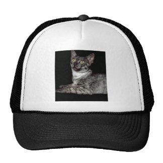 Salem Mesh Hats