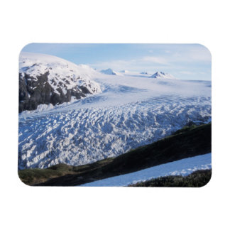 Salga el glaciar en parque nacional de los fiordos imán flexible