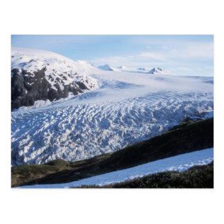 Salga el glaciar en parque nacional de los fiordos postales