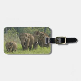 Salida de la familia del elefante indio etiquetas bolsa
