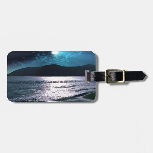 Salida de la luna de la playa de la tranquilidad etiquetas maleta